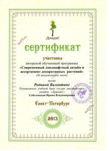 Сертификат современный ландшафтный дизайн